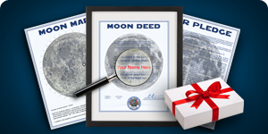 Deluxe Lunar Gift Package